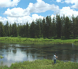 Idaho fishing for trout salmon bass fly fishing for Fly fishing boise idaho