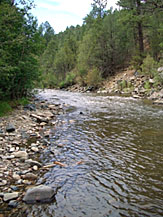 New mexico fishing report find fishing reports for bass for Pecos river fishing