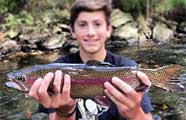 Pennsylvania trout fishing rainbow brown brook lake for Trout fishing in pa