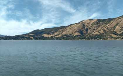 Fishing Clear Lake In Northern Ca Map Fish Species Lake Info